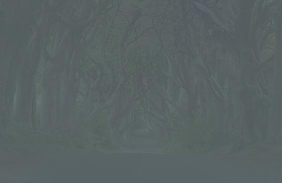 1200px-Dark_Hedges_near_Armoy,_Co_Antrim_(cropped)